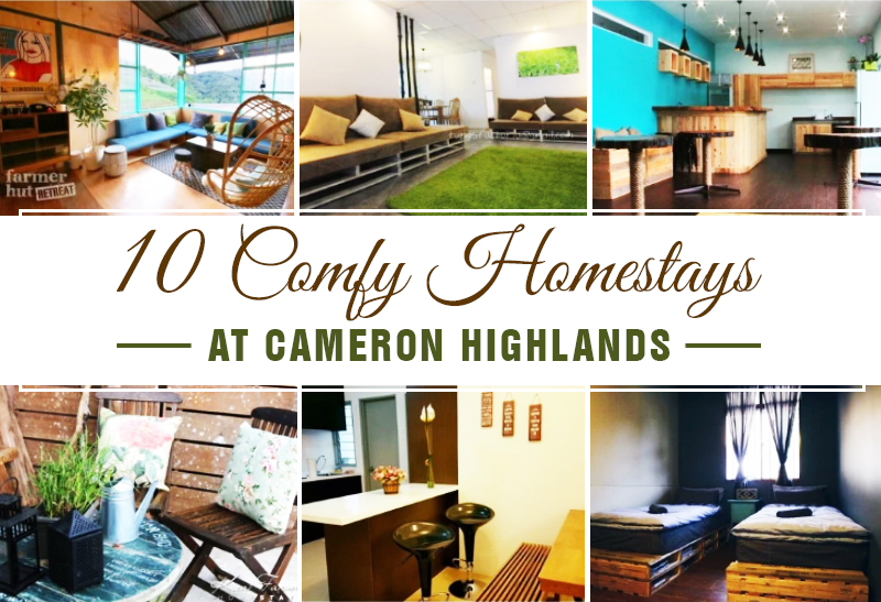 10 comfy homestays at cameron highlands klnow for Design homestay